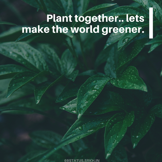 World Environment Day Images with Quotes Green full HD free download.