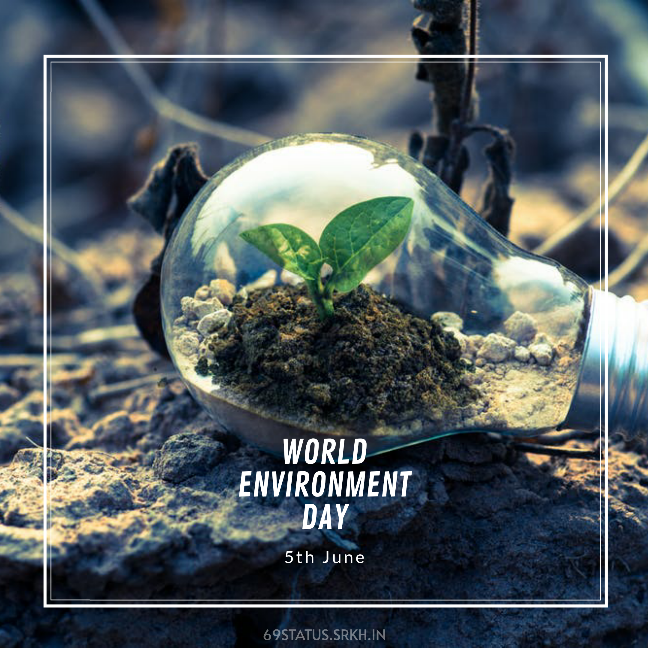 World Environment Day Pic HD full HD free download.