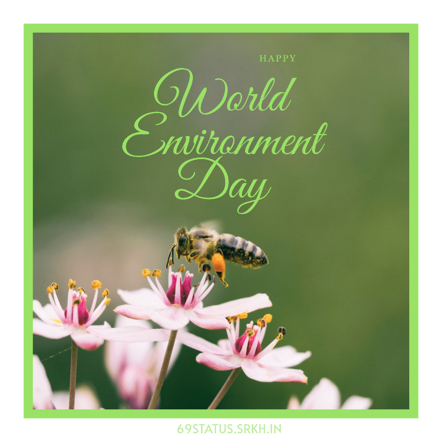 World Environment Day Pic full HD free download.