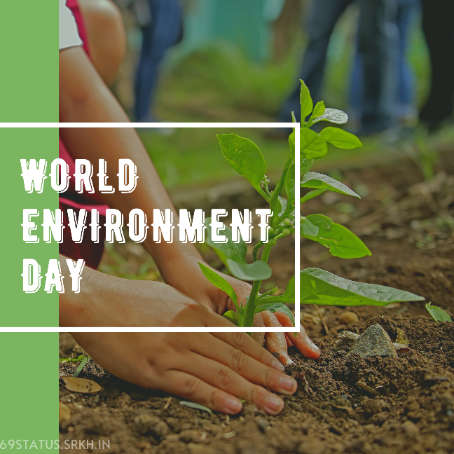World Environment Day Picture HD full HD free download.