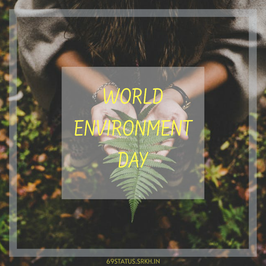 World Environment Day Picture full HD free download.