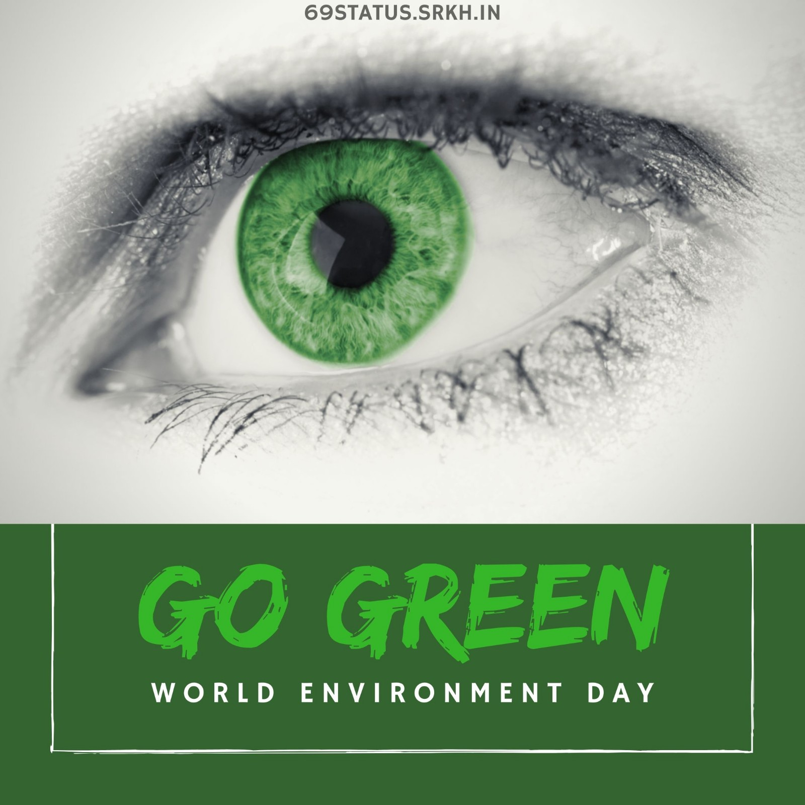 World Environment Day Poster Images Go Green full HD free download.
