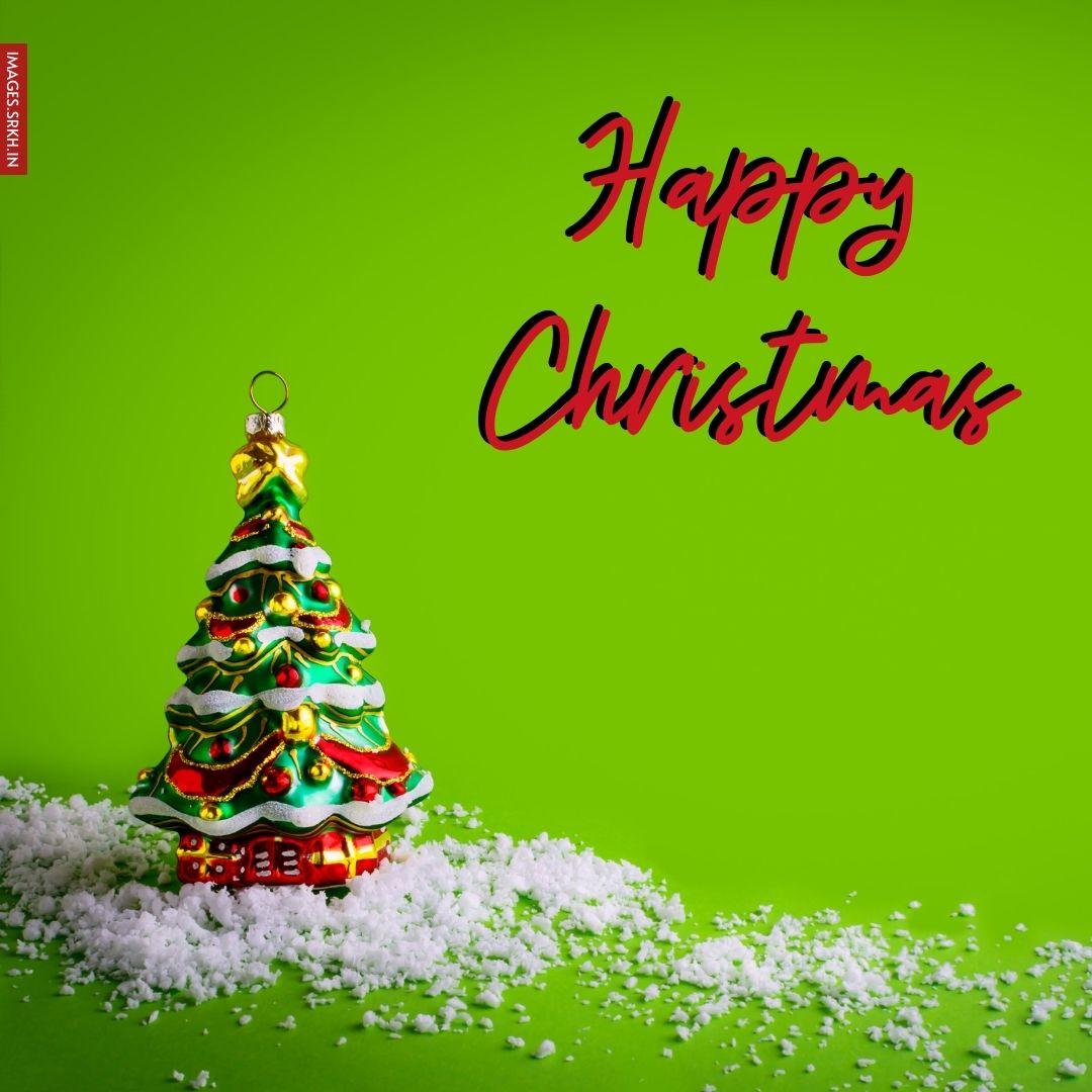 Christmas Wish Image